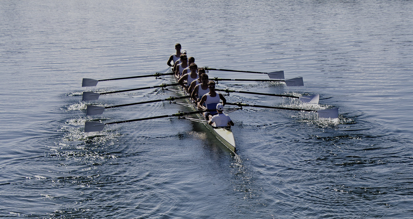 Are all of your team members actually pulling together in the same direction?
